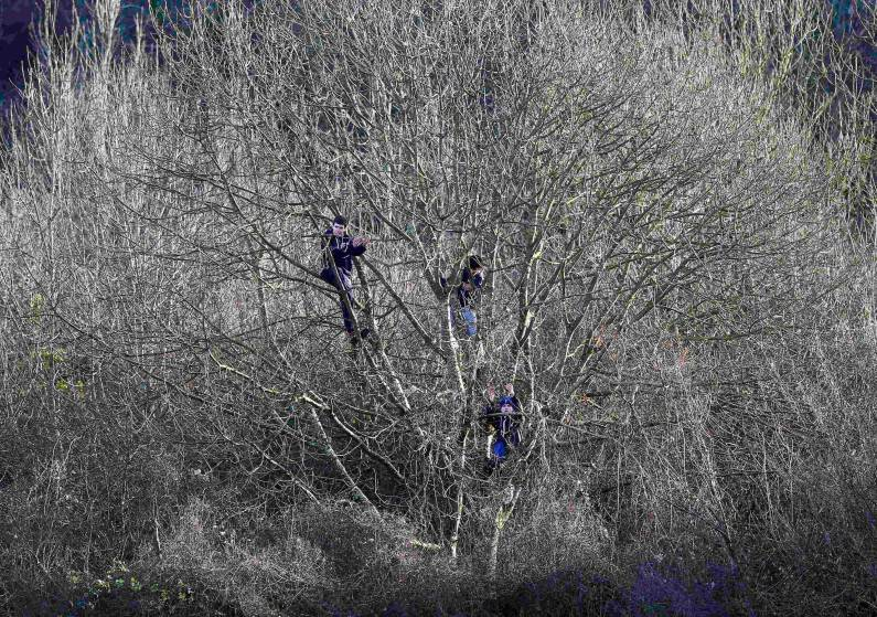Dover Athletic supporters applaud their team from trees outside the ground that overlook the pitch during their English FA Cup third round soccer match against Crystal Palace at Crabble Athletic Ground in Dover, southern England